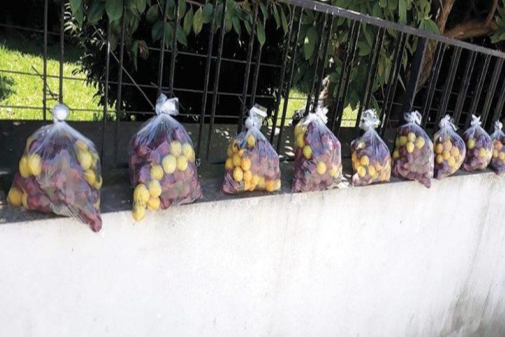 oferecida fruta a quem passar