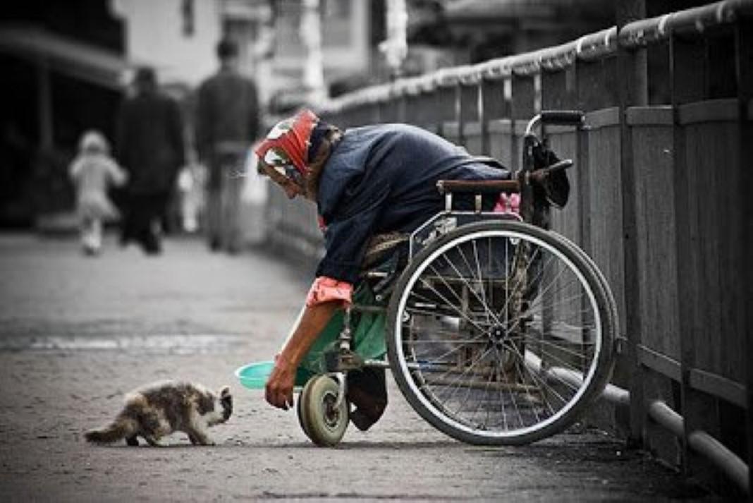 generosidade é uma das mais belas virtudes