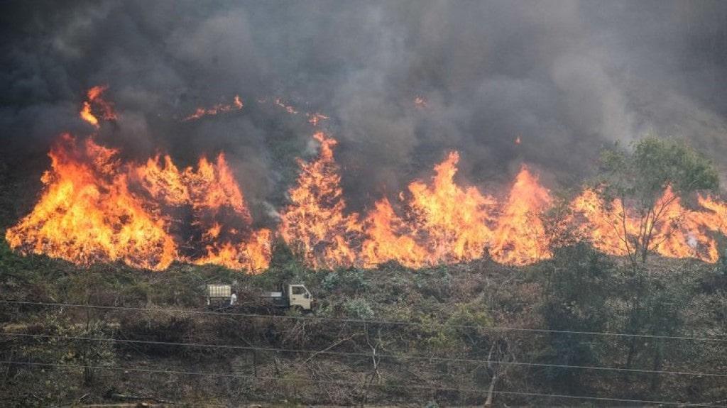 Bombeiros que combaterem incêndios florestais vão receber 2,375 euros/hora.